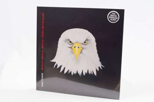 Baby Chaos Vinyl LP - in shrink wrap with download sticker
